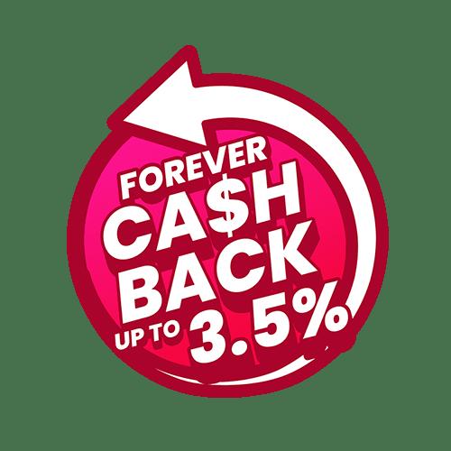 pgmall cashback consumerchant concept