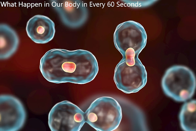 What happen inside your body in 60 seconds?