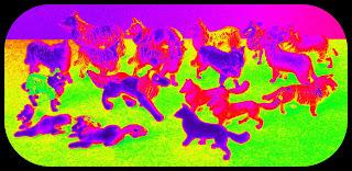 Berwick Games; Blue Box Collie Dogs; Border Collie Model; Border Collie Toy; Britains Collie Dogs; Britains Herald Dogs; Christmas Cracker Dogs; Collie Dog Model; Collie Dog Toy; Cracker Novelties; Cracker Toys; Crescent Collie Dog; Crescent Dogs; Crescent Springer Spaniels; Farm Collie Model; Farm Collie Toy; Farm Collies; Farm Dogs; Gum Ball Capsule Toys; Gum Ball Dogs; Herald Collie Dog; Holly Collie Dog Toy; Hong Kong Collie Dogs; Hong Kong Herald; Model Border Collie; Model Collie Dog; Model Farm Collie; Model Rough Collie; Plastic Border Collie; Plastic Collie Dog; Plastic Farm Collie; Plastic Rough Collie; Plastic Sheep Dogs; Rough Collie Model; Rough Collie Toy; Sheepdog Toys; Sheepdogs; Small Scale World; smallscaleworld.blogspot.com; Star Toys Dogs; Timpo Collie Dogs; Tomy Collie Dog; Tomy Plastic Collie Dog; Toy Border Collie; Toy Collie Dog; Toy Farm Collie; Toy Rough Collie; Toy Sheepdogs;