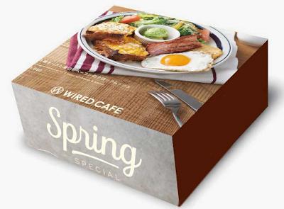 Model Packaging Nasi Kotak Yang Menarik