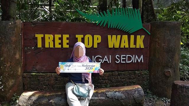 Kedah | Tree Top Walk di Sungai Sedim