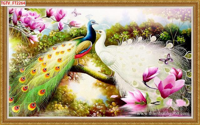Tranh Chim Công Hoa Mộc Lan