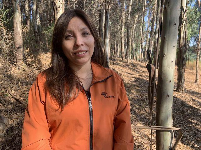 Silvia Hormazabal Gutiérrez