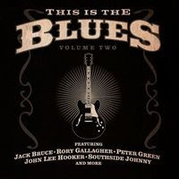this is the blues vol 2