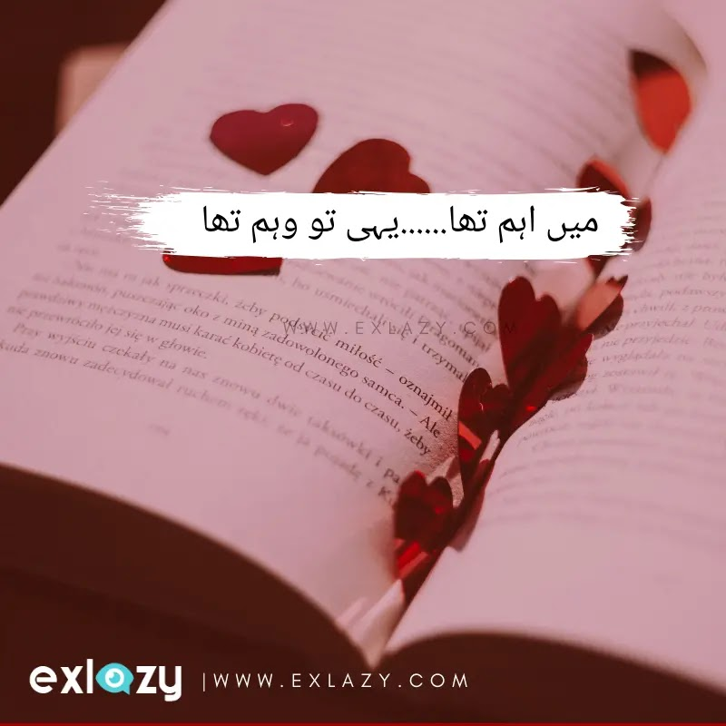 39 Life Quotes In Urdu One Line Iman Sumi Quotes In that case, this is the ideal location for you where you'll locate the whatsapp status in english, urdu, german, hindi, etc. 39 life quotes in urdu one line iman