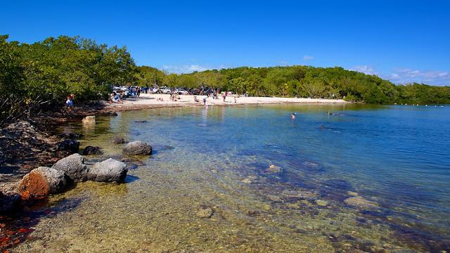 John Pennekamp Coral Reef State Park em Key Largo