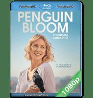 UN MILAGRO INESPERADO (2020) 1080P HD MKV ESPAÑOL LATINO