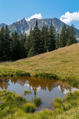 Kulinarische Genusswanderung – Bürserberg | Wandern Brandnertal | Wanderung Vorarlberg 12