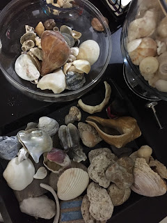 Seashell Home Art Projects With Your Favorite Shells