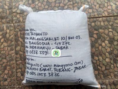 Benih Padi Pesanan  DEDE RIYANTO Indramayu, Jabar.   (Setelah di Packing).