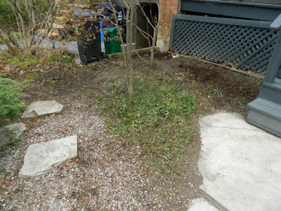 Toronto Parkdale front garden spring cleanup after by Paul Jung Gardening Services