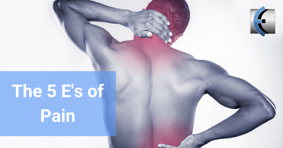 Photo of Top 5 Fridays! The 5 Es of Pain | Modern Manual Therapy Blog