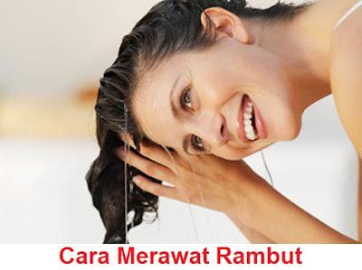 Image Result For Agar Rambut Tidak Ketombe