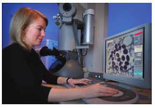 A CDC intern using a TEM. (Courtesy of Cynthia Goldsmith, James Gathany, and the CDC.)
