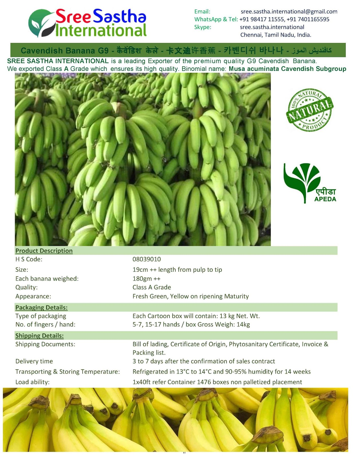 Fruits and Vegetable Export - インドからの果物と野菜の輸出
