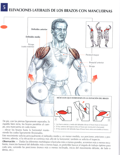 ejercicios con mancuernas para pectoral