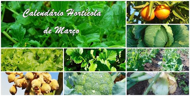 Calendário Agrícola e sementeiras de Março
