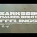 Sarkodie - Feelings ft. Maleek Berry | VIDEO | Download