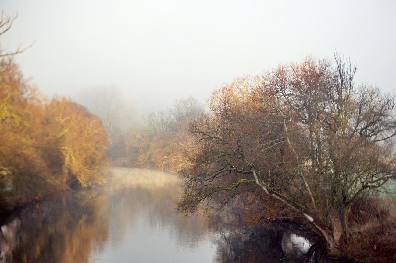 Bilder der Woche #51 (KW51/2020) – Prächtige Lichtstimmung am Neckar