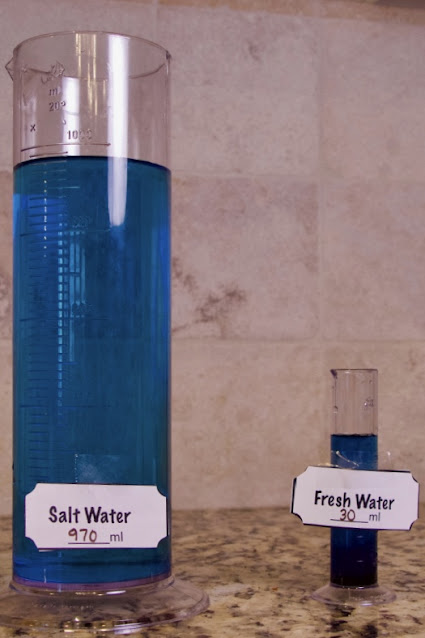 Lab Salt Water vs. Fresh Water on Earth