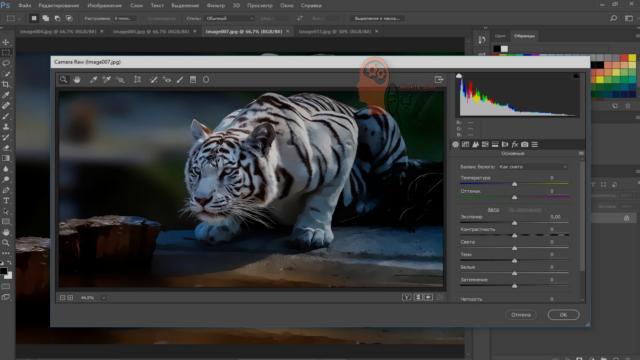 تحميل برنامج فوتوشوبDownload Adobe Photoshop 2021 اخر اصدار مجانًا