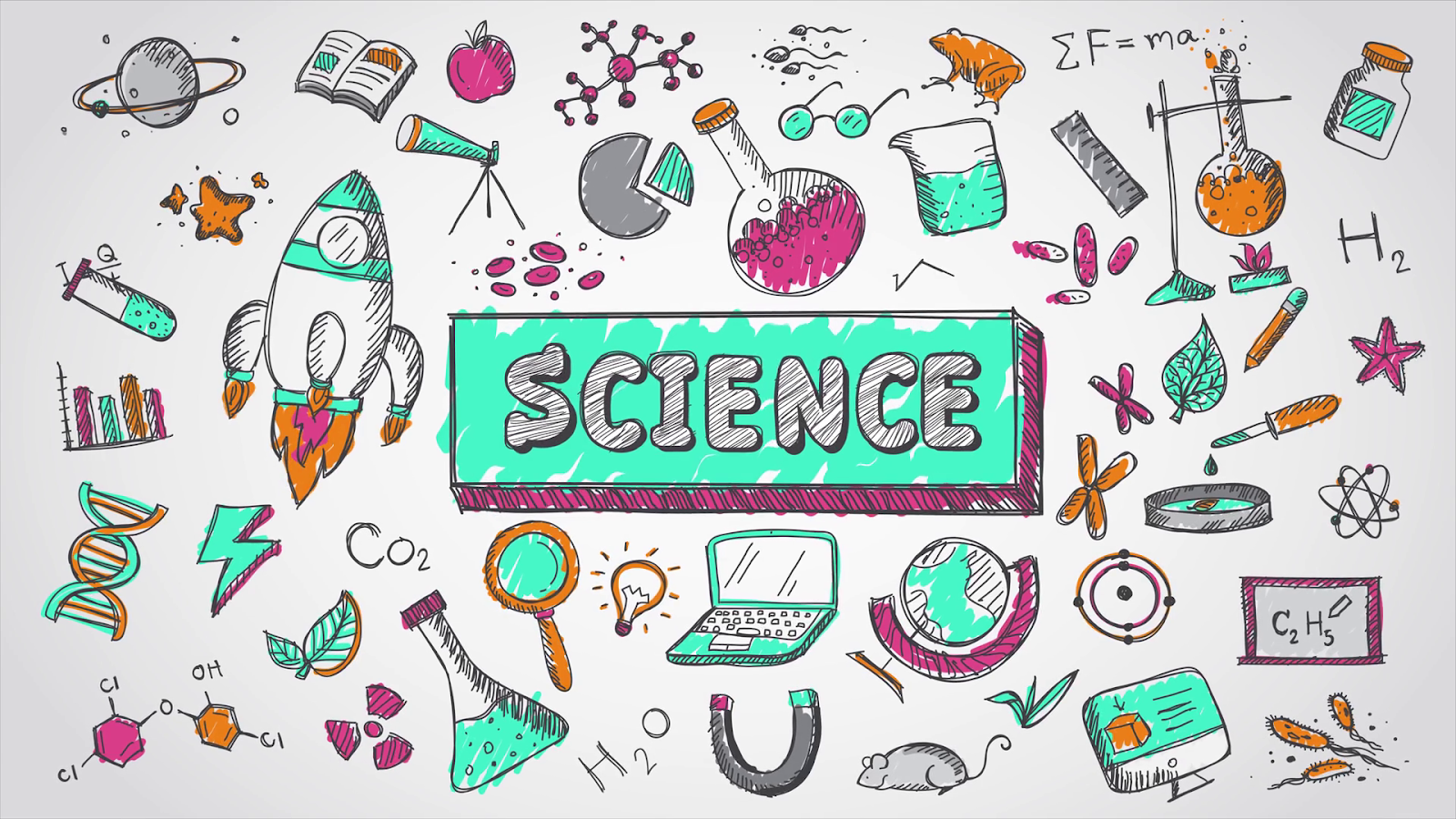 Science in Daily Life-Essay