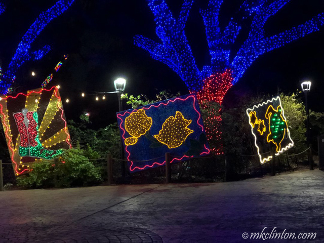 Christmas at Houston's zoo