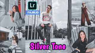 Preset Lightroom Silver Tone Ala Selebgram DNG & XMP
