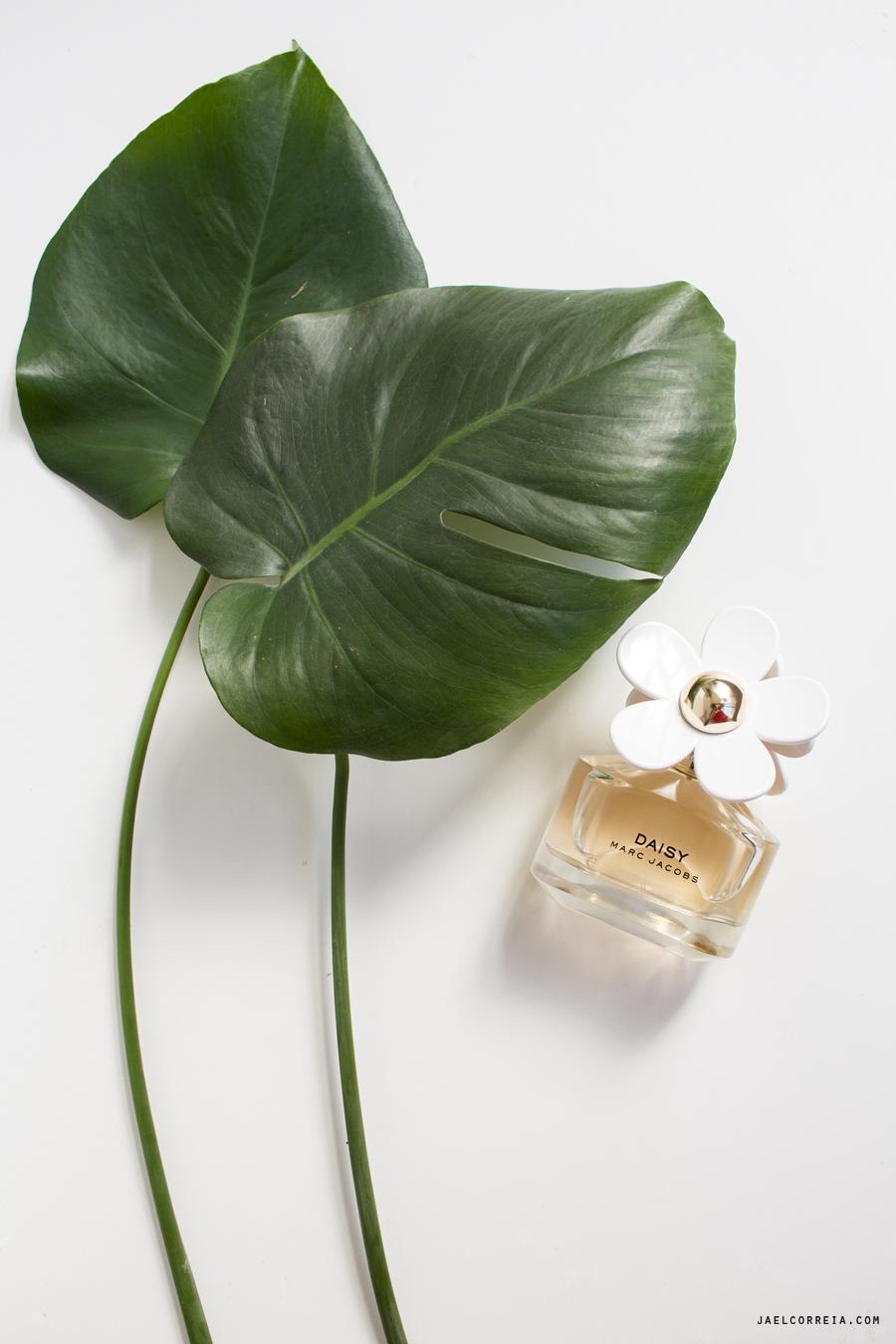 marc jacobs daisy parfum perfume eau notino loja online store shop perfumes baratos portugal
