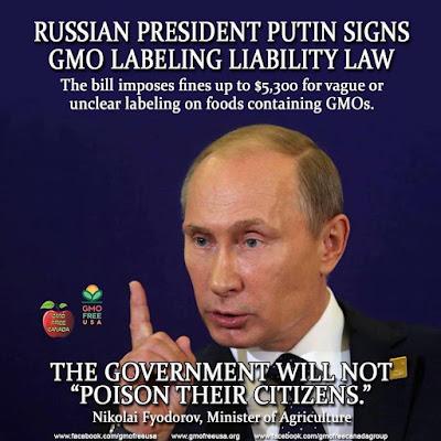 O bioquímico Yevgeny Fedorov imagina complôs para bajular o amo do Kremlin e apoiar suas iniciativas.