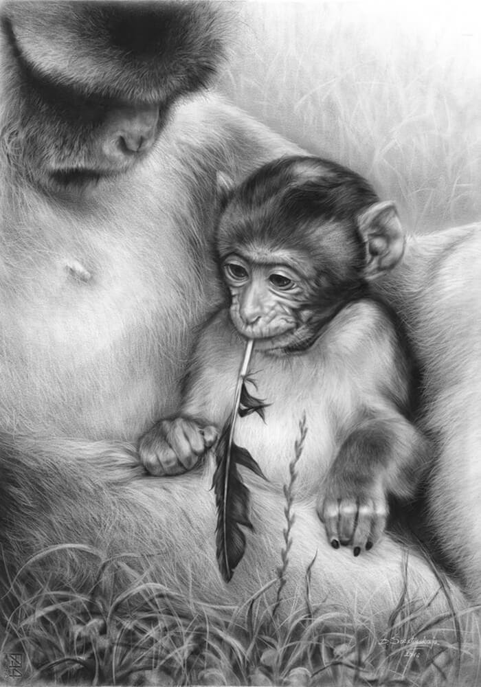 06-Monkey-and-Mother-Danguole-Serstinskaja-Animal-Dry-Brush-Technique-Paintings-www-designstack-co