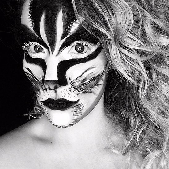 Zebra Cat Halloween Makeup