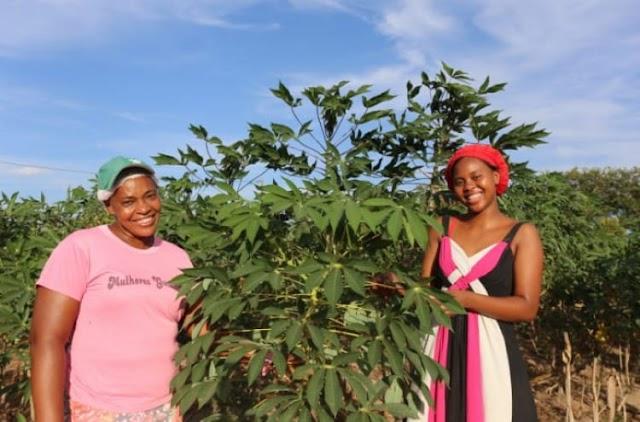 Mulheres rurais baianas mostram força do trabalho da agricultura familiar