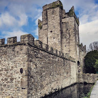 Pictures of Dublin Castles: Drimnagh Castle