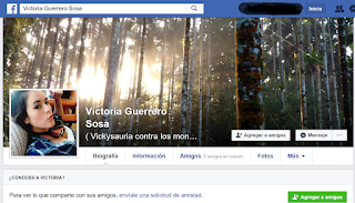 VICTORIA GUERRERO SOSA
