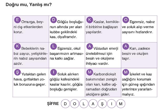 4. Sınıf Fenbil Yayınları Fen Bilimleri Ders Kitabı 45. Sayfa Cevapları 1. Ünite Sonu Değerlendirme Soruları