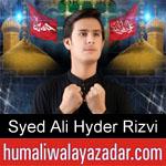 https://www.humaliwalyazadar.com/2018/09/syed-ali-hyder-rizvi-nohay-2019.html