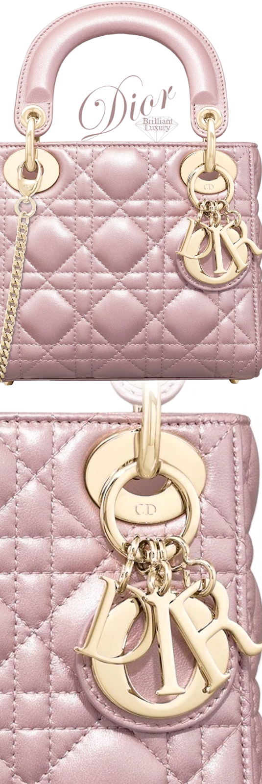 Dior Lady Dior Lotus Pearly Mini Bag #brilliantluxury