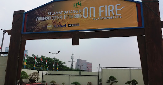 "LIPUTAN KHUSUS PAMERAN BONSAI TANGERAN ""ON FIRE"" 2016"