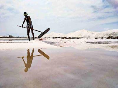 ماهو الفرق بين ملح البحر وملح الطعام