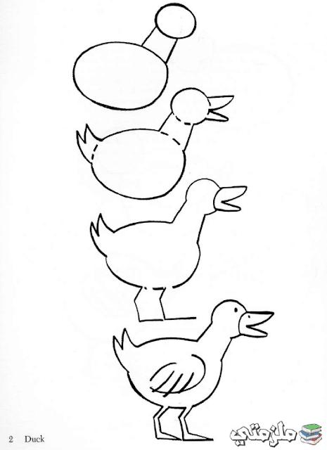 كتاب تعلم رسم الحيوانات للاطفال
