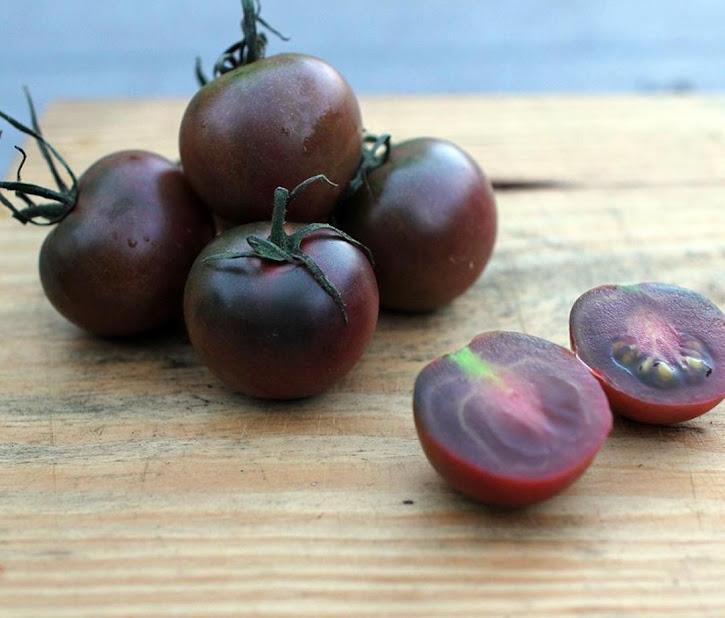 20 Biji Bibit Benih Tomat Hitam Black Cherry Tomato Tomat Ceri Hitam Jawa Timur