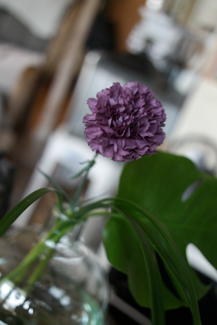 Neilikka, Kukkakauppa Hopiahippu