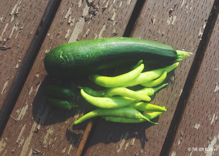 Zucchini, Banana and Jalapeño Peppers // Veggie Garden Updates: Mid Summer 2018 | www.thejoyblog.net