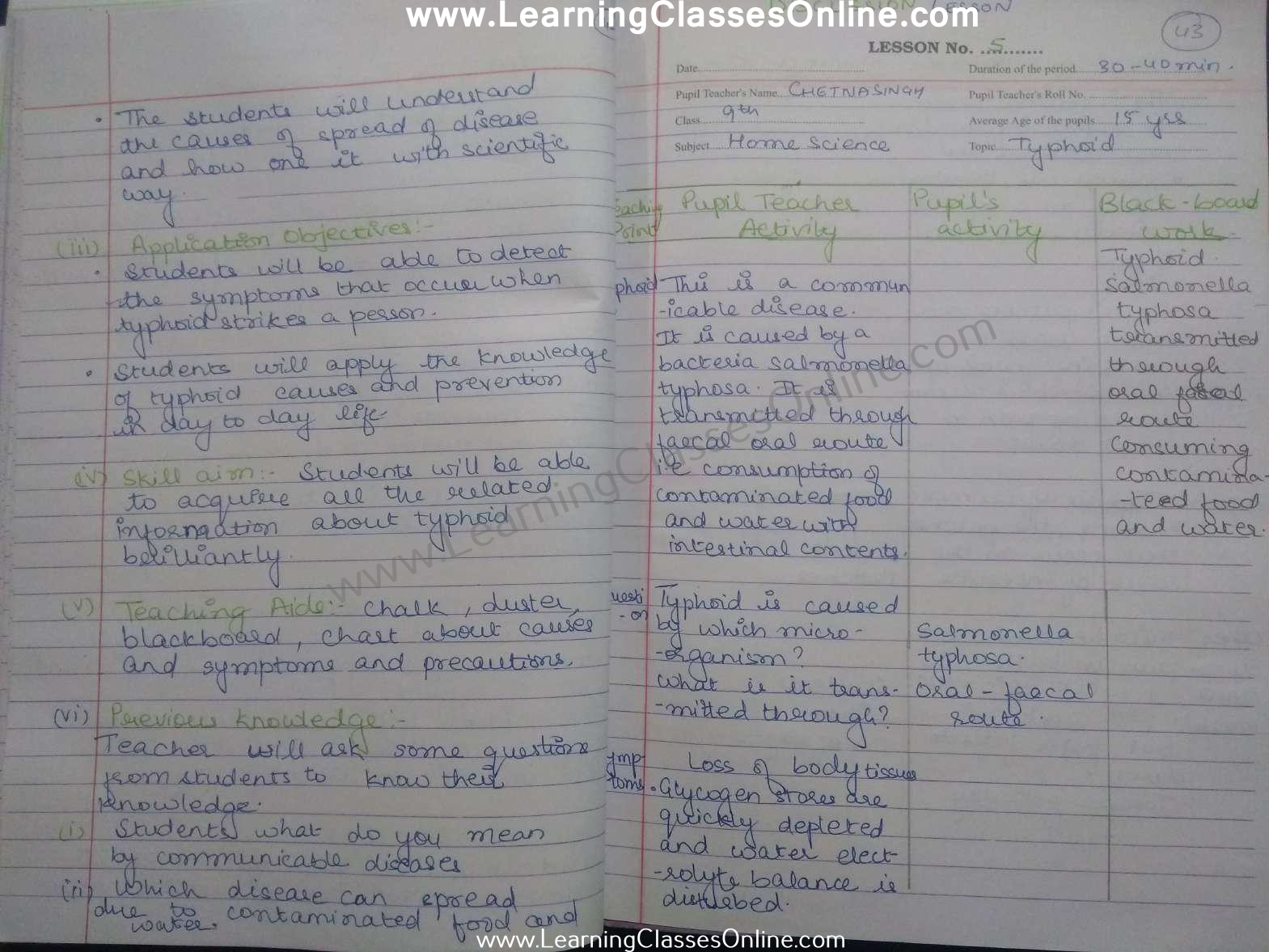 B.Ed Lesson Plan Home Science on Typhoid topic in English for Class 9 teachers free download pdf
