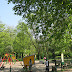 Plac Chełmiński – zielona wizytówka Okola