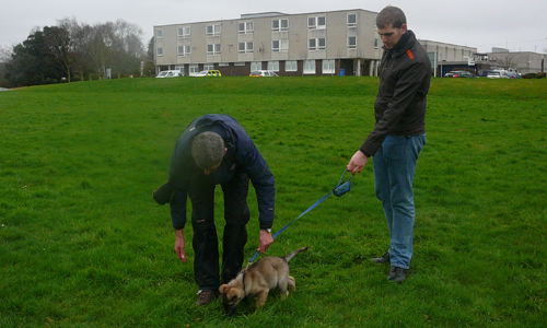 Small puppy on a lead with puppy walker and Paul Gennon standing in a field at HQ
