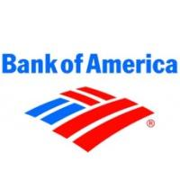 Bank of America-Team Member