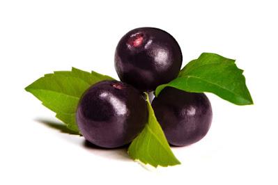 bentuk buah acai berry