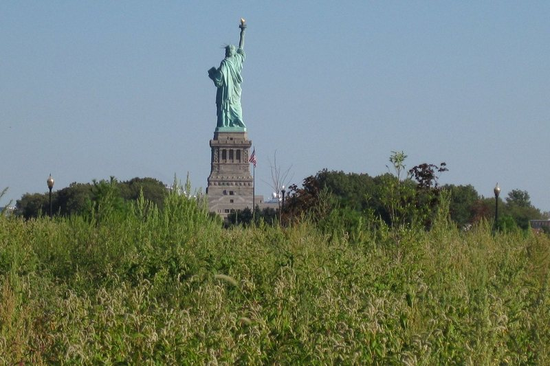 New York, United States of America. Photo of the Statue of Liberty from the alley of Liberty State Park